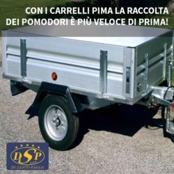carrello pima - Autofficina Di Santo, San Salvo