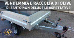 vendemmia carrelli PIMA - Autofficina Di Santo, San Salvo